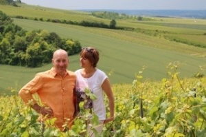 Domaine Olivier Morin à Chitry-Le-Fort